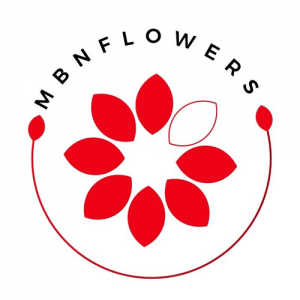 mbn-logo